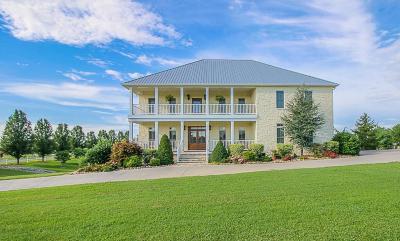 Sevierville Single Family Home For Sale: 1564 Ellis Rd