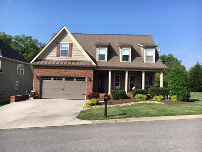 Powell Single Family Home For Sale: 7300 Beechmeadow Lane