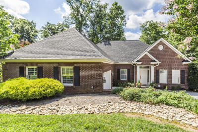 Lenoir City Single Family Home For Sale: 145 Westchester Court