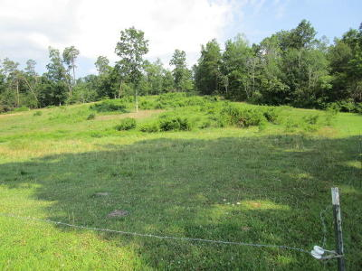Residential Lots & Land For Sale: Smokey Rd