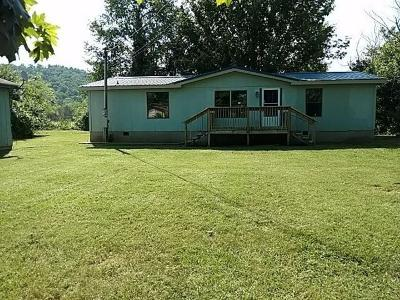 Sevier County Single Family Home For Sale: 2250 Maples Drive