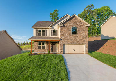 Knoxville Single Family Home For Sale: 1206 Peake Lane