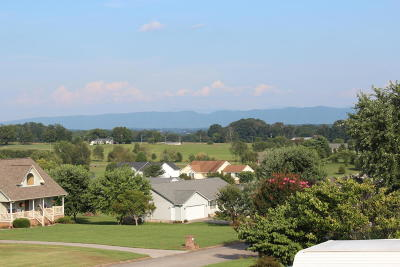 Greenback Single Family Home For Sale: 5625 Evergreen Farms Lane