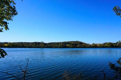 Meigs County, Rhea County, Roane County Residential Lots & Land For Sale: Lakeview Cove Lot 136 Drive