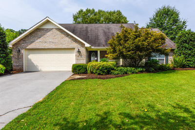 Greenback Single Family Home For Sale: 5537 J Riley West Rd