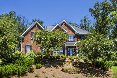Knoxville Single Family Home For Sale: 747 Fox Dale Lane