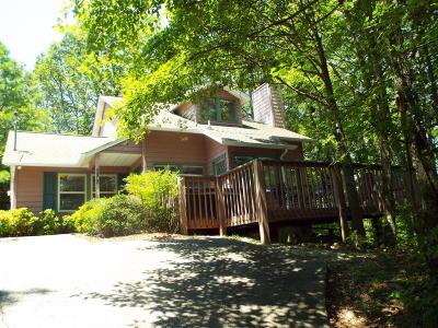 Gatlinburg Single Family Home For Sale: 1148 Ski View Drive