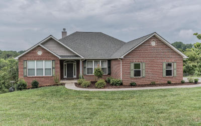 Knoxville Single Family Home For Sale: 2231 White Frye Lane