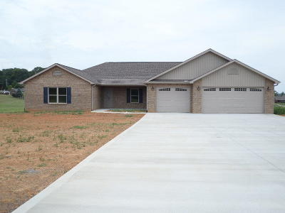 Dandridge, Sevierville Single Family Home For Sale: 1031 Southwind Circle