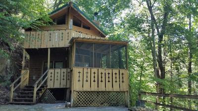 Gatlinburg Single Family Home For Sale: 947 Ski Mountain Rd Rd