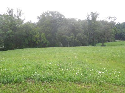 Loudon County, Blount County, Monroe County Residential Lots & Land For Sale: 340 Silent River Lane