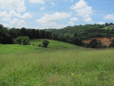 Jefferson City Residential Lots & Land For Sale: 700 N Highway 92