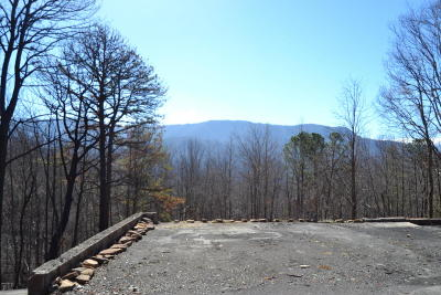 Gatlinburg Residential Lots & Land For Sale: 705 Vixen Run