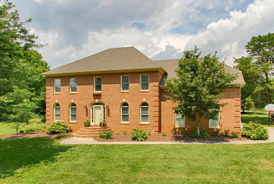 Knoxville Single Family Home For Sale: 443 Westbridge Drive