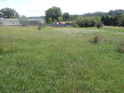 Blaine Residential Lots & Land For Sale: Blaine Drive