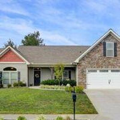 Knoxville Single Family Home For Sale: 1107 Walnut Branch Lane