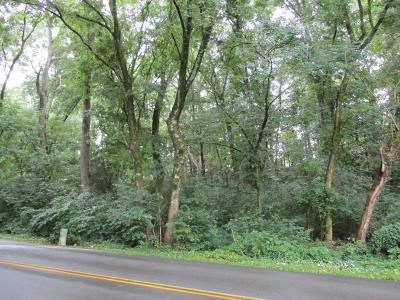 Residential Lots & Land For Sale: 725 Peterson Lane