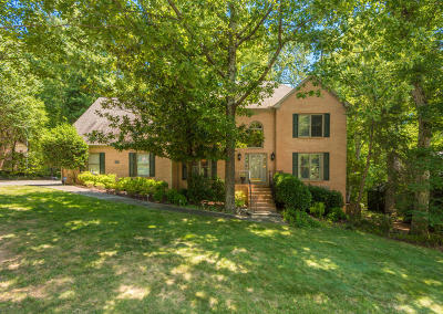Knoxville Single Family Home For Sale: 533 Battle Front Tr