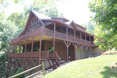 Lafollette Single Family Home For Sale: 323 Suncrest Cove