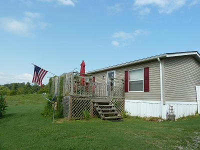 Powell Single Family Home For Sale: 427 Strader Rd