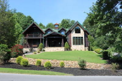 Sevierville Single Family Home For Sale: 2603 Cedar Falls Way
