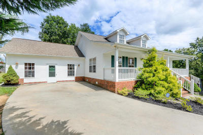 Single Family Home For Sale: 250 Mallory Drive