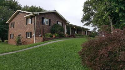 Dandridge, Sevierville Single Family Home For Sale: 624 Hwy 139