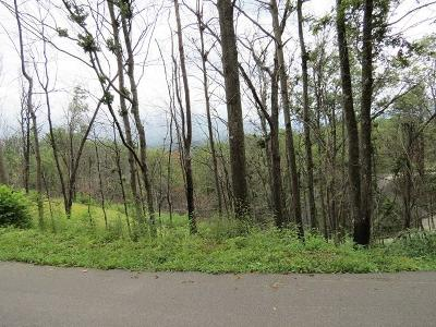 Gatlinburg Residential Lots & Land For Sale: Lot 58 Deer Path Lane