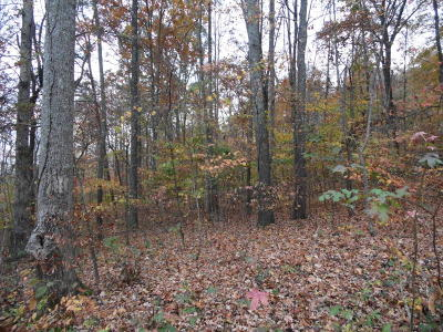 Residential Lots & Land For Sale: N Shorewood Lane