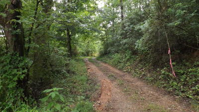 Residential Lots & Land For Sale: 480 Shaw Hollow Rd