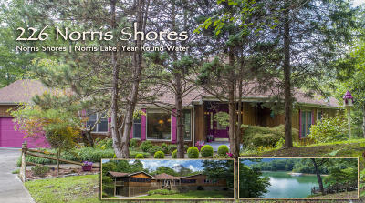 Single Family Home For Sale: 226 Norris Shores Lane