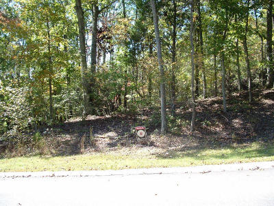 Residential Lots & Land For Sale: Lot 66 High St