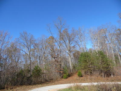 Residential Lots & Land For Sale: Hiwassee View Drive