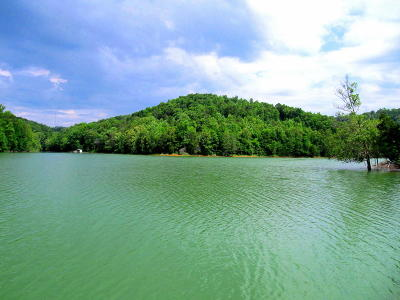 Speedwell TN Residential Lots & Land For Sale: $65,000