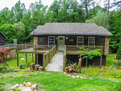 Sevier County Single Family Home For Sale: 3446 &3448 Obes Way