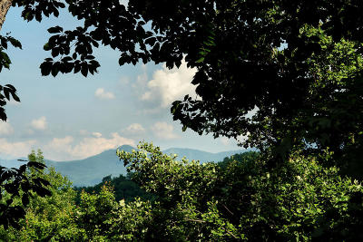 Gatlinburg Residential Lots & Land For Sale: 511 Greenbriar Lane