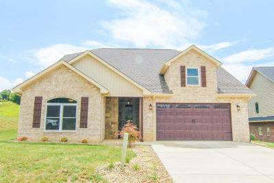 Dandridge, Sevierville Single Family Home For Sale: 618 Woodchase Way