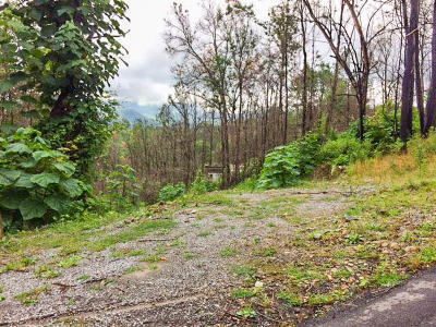 Gatlinburg Residential Lots & Land For Sale: 904 Elm Road