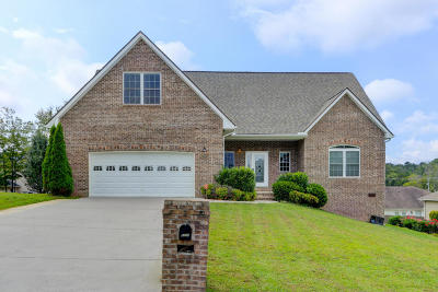 Knoxville Single Family Home For Sale: 8006 Stone Hollow