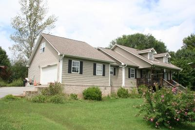 Sevier County Single Family Home For Sale: 248 Foothills Drive