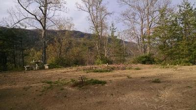 Blaine Residential Lots & Land For Sale: 2520 Lea Lakes Rd