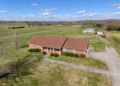 Maryville Single Family Home For Sale: 966 Hitch Rd