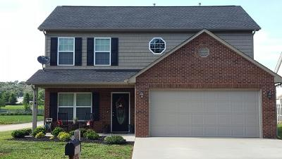 Loudon Single Family Home For Sale: 1241 Olivia Circle