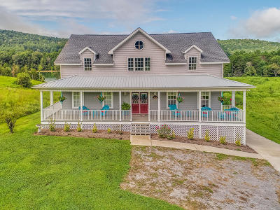 Single Family Home For Sale: 289 Old Leadmine Bend Rd