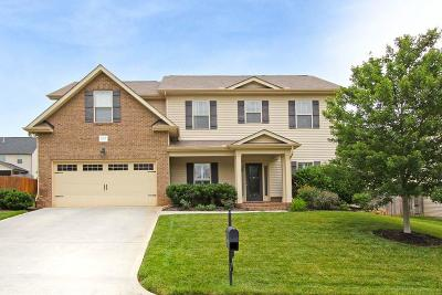 Knoxville Single Family Home For Sale: 1318 Hillman Rd
