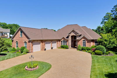 Single Family Home For Sale: 226 Chickasaw Lane