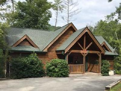Sevierville Single Family Home For Sale: 2609 Bear Crossing Way