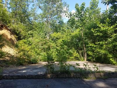Gatlinburg Residential Lots & Land For Sale: 301 Matterhorn Drive