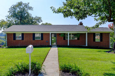 Knoxville Single Family Home For Sale: 5420 Green Acre Drive