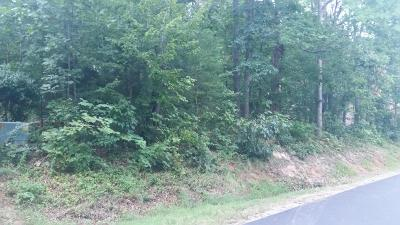 Residential Lots & Land For Sale: 120 Cheeskogili Way #`